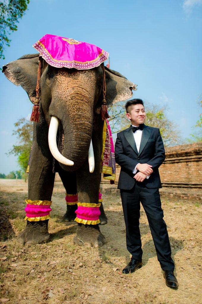 Ayutthaya Pre Wedding - Thailand Wedding Photographer