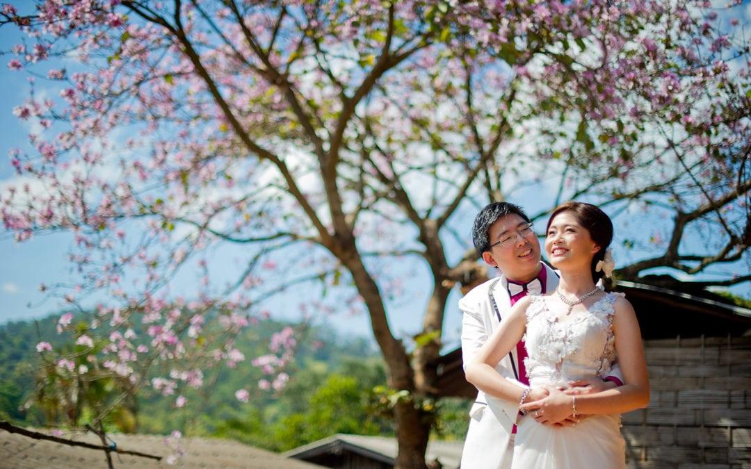 Karen & Billy's Pre-Wedding in Chiang Mai Thailand | Doi Suthep – Pui National Park – Wiang Kum Kam – Khum Phaya Resort