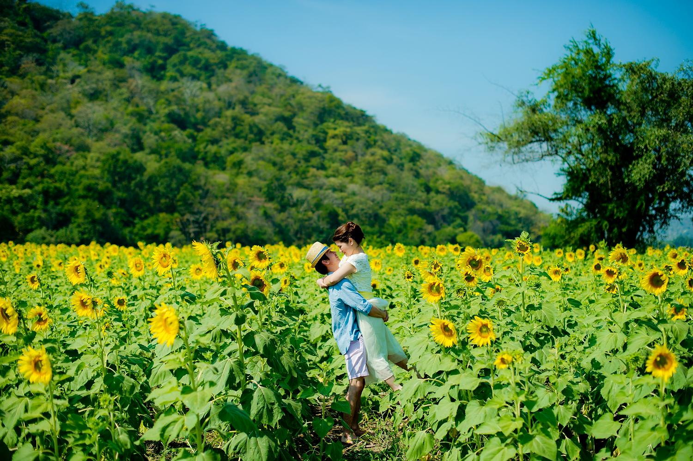 Thailand Sunflower Field Pre-Wedding in Saraburi - Thailand Wedding Photographer